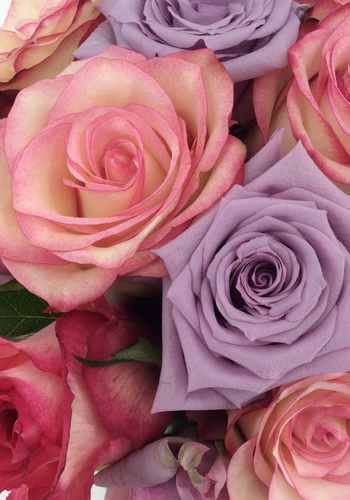 Abelia Meesterbinders Rozen boeket roze zachte kleuren
