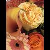 Abelia Meesterbinders Boeket oranje rood tinten seizoensbloemen