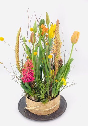 Abelia Meesterbinders Tuintje bonte bloemen