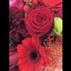 Abelia Meesterbinders Rouwbiedermeier rode bloemen
