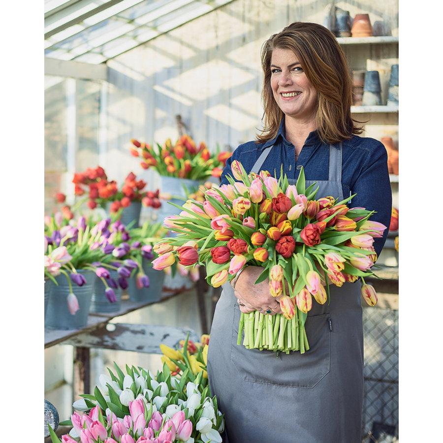 Gemengde tulpen-1