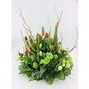 Abelia Meesterbinders Tulpentuin gekleurd voor uitvaart
