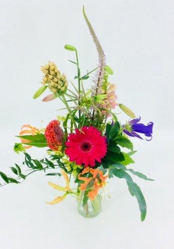 Abelia Meesterbinders Zomerse seizoensbloemen