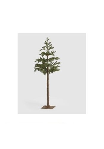 Abelia.nl Kerst Kerstboom op stam Tronco Pino H162