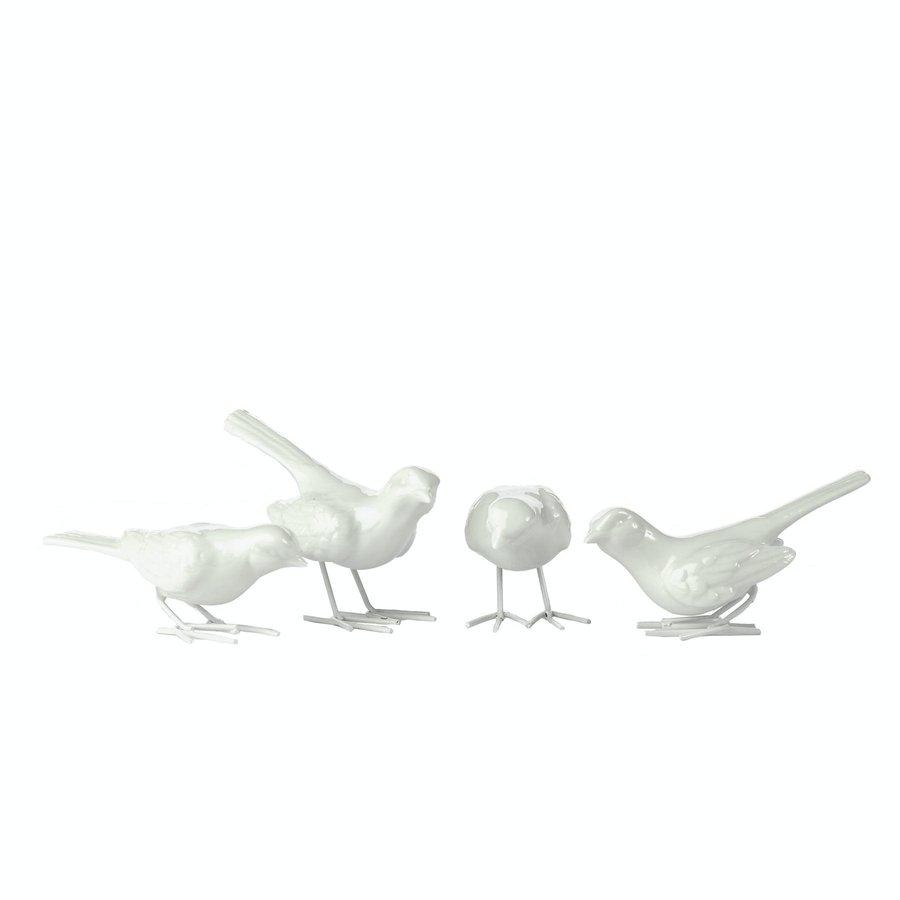 Starling ironlegs white set 4-1