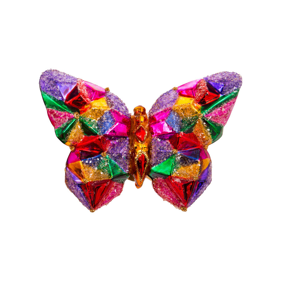 Vlinder kleurig-3
