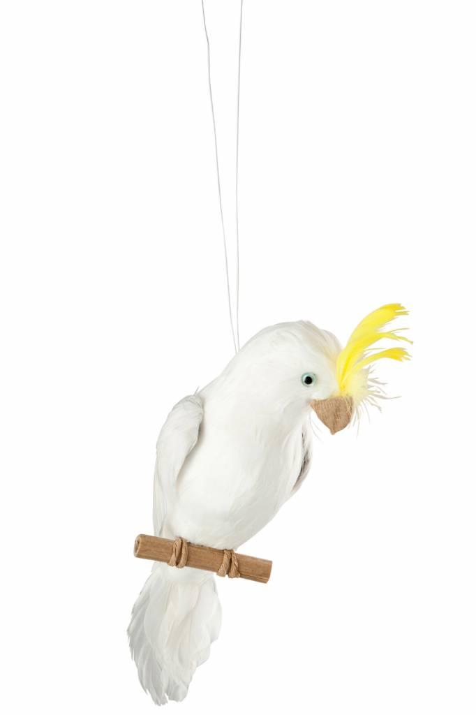J-Line White parrot