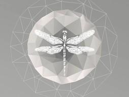 Lé Papiers de Ninon Poster Dragonfly