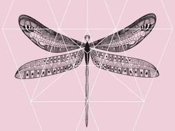 Lé Papiers de Ninon Poster Pink Butterfly