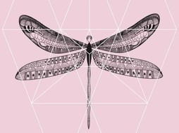 Lé Papiers de Ninon Poster ponk Dragonfly