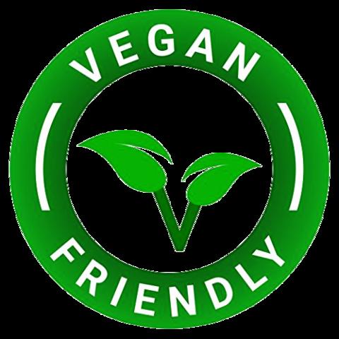 diksonatura vegan anti dandruff shampoo