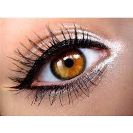 Liquid eyeliner for Sharp and Perfect line under the eyes