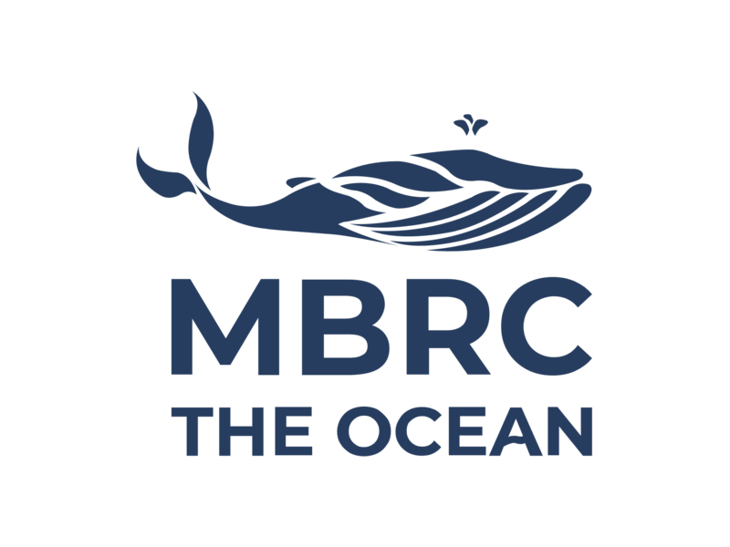 MBRC the Ocean Humpback Backwash armband touw