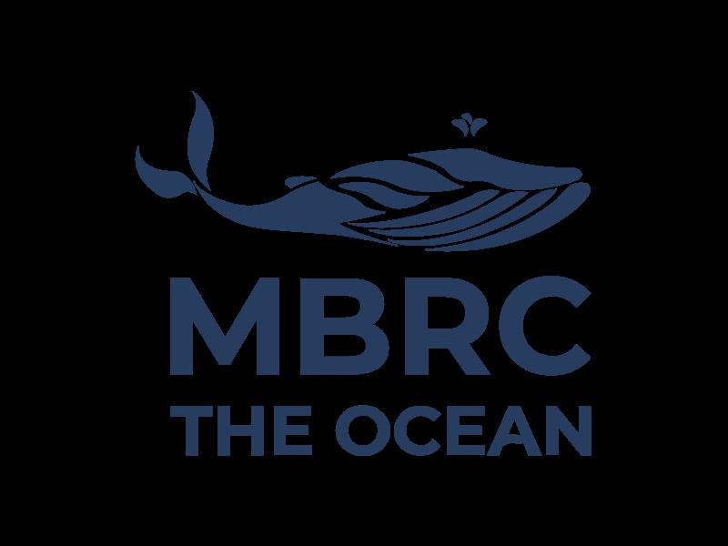 MBRC the Ocean Atlantic Ocean armband touw