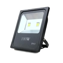 100W 10000 lumen LED Floodlight IP65 Construction Lamp