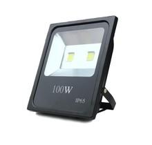 100W 10000 lumen LED Floodlight IP65 Construction Lamp