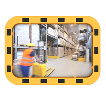 EUvex Industrieel Spiegel Rond/Rechthoek Pro