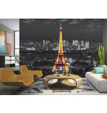 Dutch Wallcoverings AG Design Eiffel In The Night 4D
