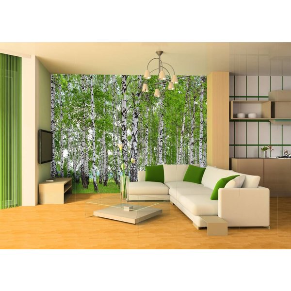 Dutch Wallcoverings AG Design Berry Birch 4D