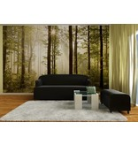 Dutch Wallcoverings AG Design Morning Forest 4D