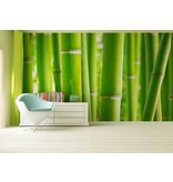 Dutch Wallcoverings AG Design Bamboo 4D