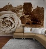 Dutch Wallcoverings AG Design Black & White Rose 4D