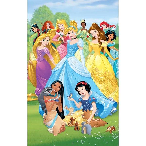 Dutch Wallcoverings Walltastic Disney Princesses fotobehang