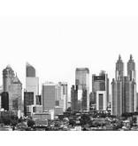 Dutch Wallcoverings City Love Jakarta z/w 7-d