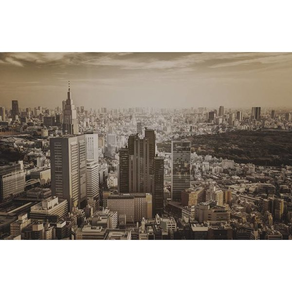Dutch Wallcoverings City Love Tokyo vint. 9-d