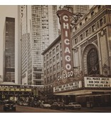 Dutch Wallcoverings City Love Chicago vint. 6-d