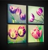 Dutch Wallcoverings Canvas set Tulpen 2574S20