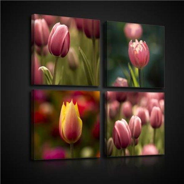 Canvas set Tulpen 2575S20