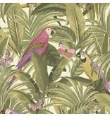 Dutch Wallcoverings Bontanical Papegaai groen/roze BA2202