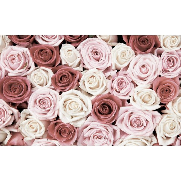 Dutch Wallcoverings Fotobehang Roze rozen