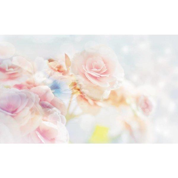Dutch Wallcoverings Fotobehang Rozen licht roze