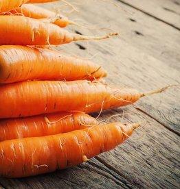 Blinde vink, aardappelpuree & worteltjes