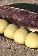 Oma's bakschotel met krieltjes, capucijners, champignon, spek en ui