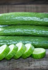Komkommersoep met garnalen