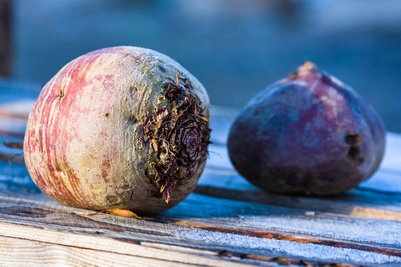 Gebraden worst in jus, gekookte aardappel en koolraapjes in tuinkruidensaus