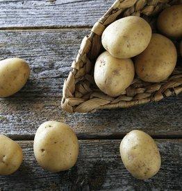 Runderlapje in rode wijnsaus, boontjes & aardappelen