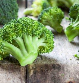 Kipdij met broccoli en rijst