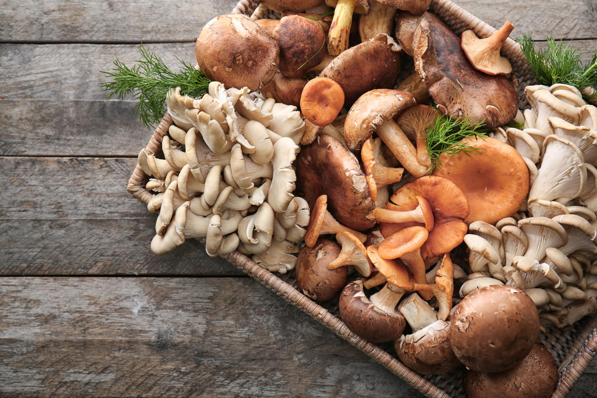 Fusili Gorgonzola, courgette, kastanje-champignons & pecannoten