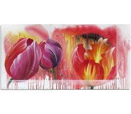 Magische Tulpen