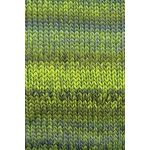 Lang Yarns Mille Colori Big Groen (16)