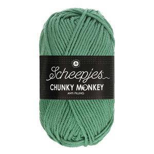 Scheepjes Chunky Monkey 1725 - Eucalyptus