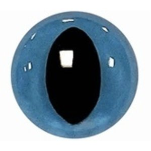 Veiligheidsogen poezen blauw