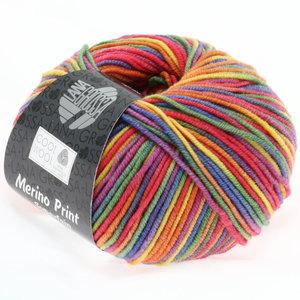 Lana Grossa Cool Wool Print 703 - paars/groen/framboos/oranje/geel/blauw
