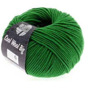 Lana Grossa Cool Wool Big 939 - Donker Groen