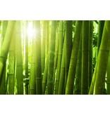 Koudschuim topmatras bamboe 90x210