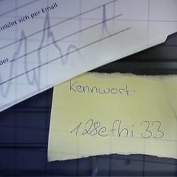 Social Password Audit